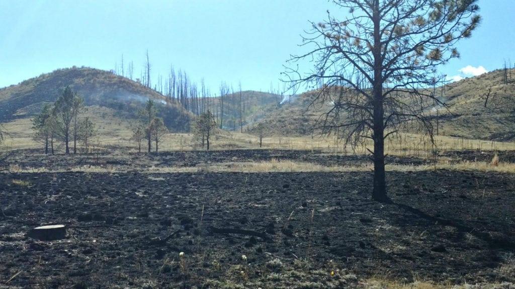 Hot spots smolder on the Turkey Track 8 Fire burning 10 miles north of Woodland Park on Sept. 24, 2018.