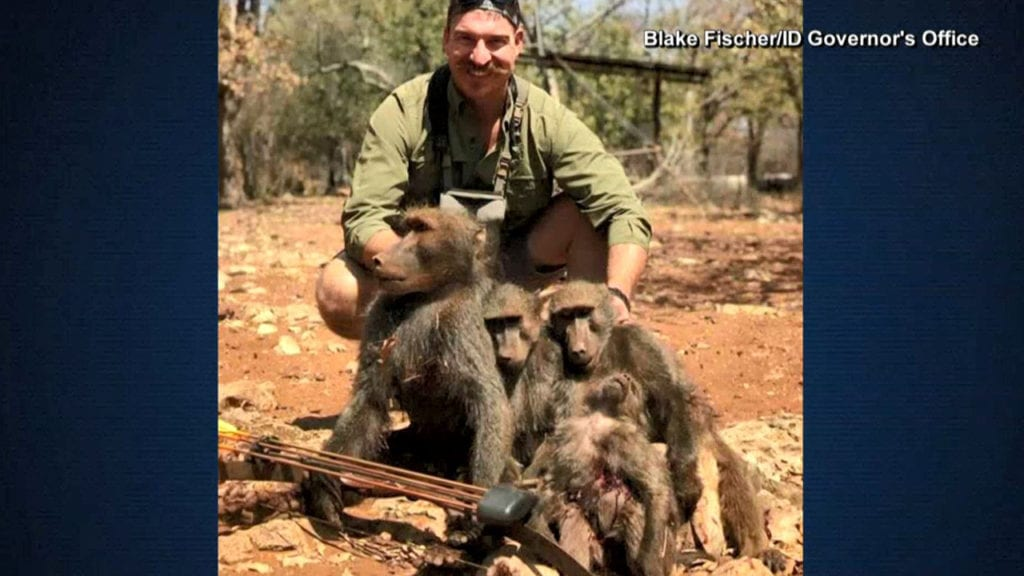 Family of babboons final