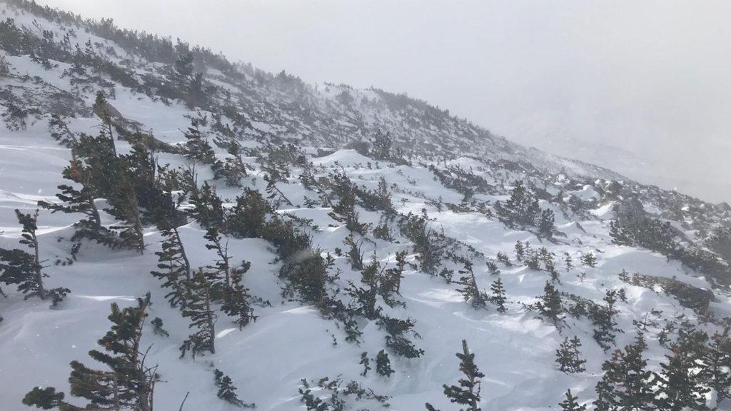 Longs Peak trail