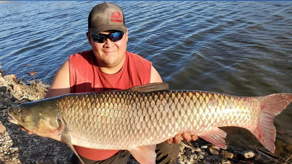 Huge carp
