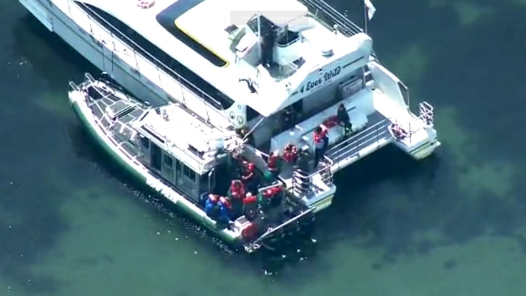 Whale-Watching-Passengers-Rescued
