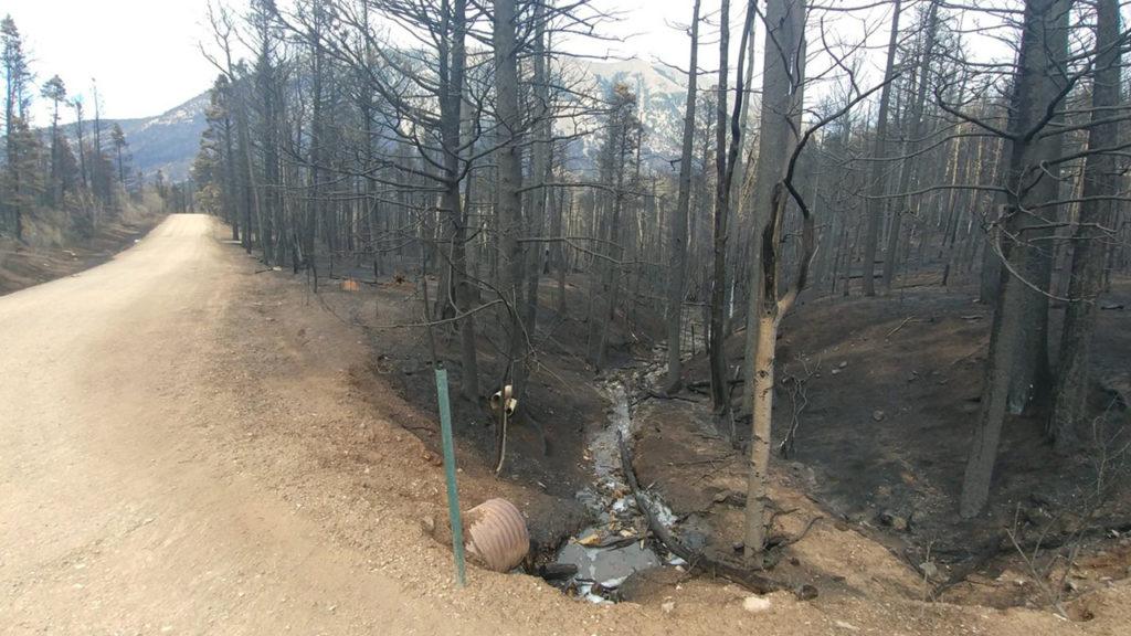 Spring Fire burn scar