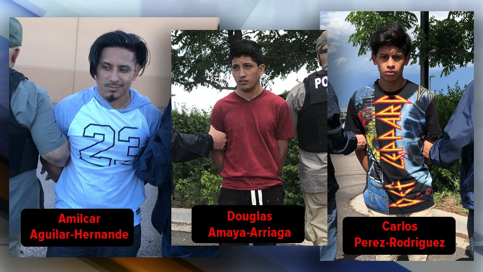 ICE detainee escapees